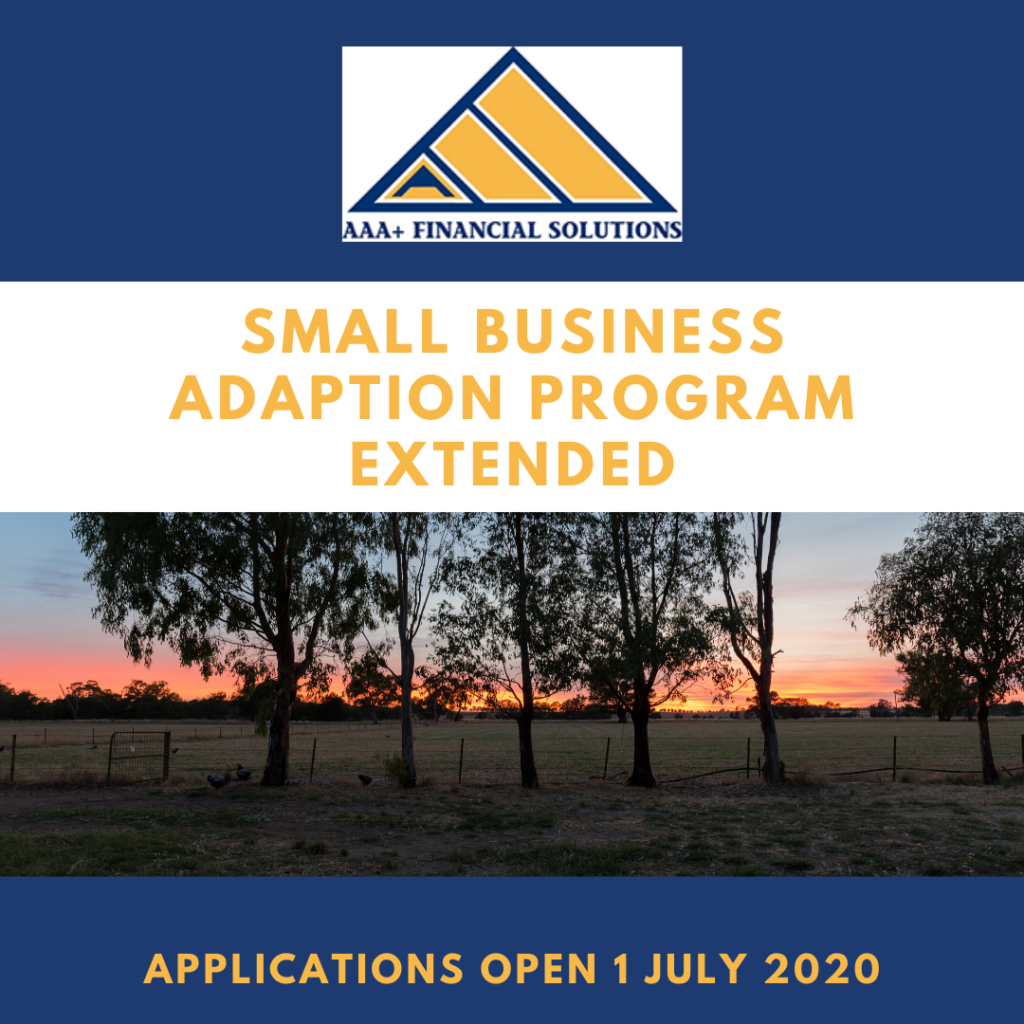 Small business adaption grant