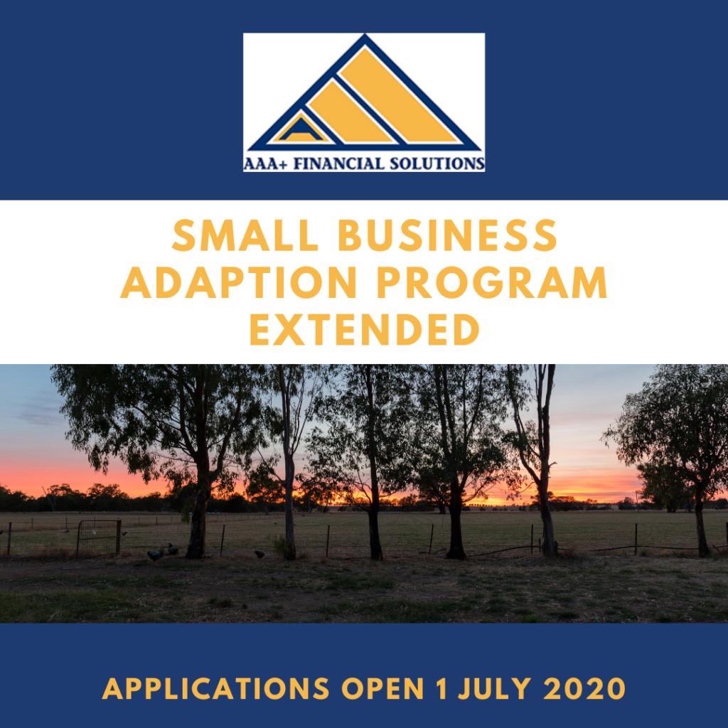 Small business adaption grant